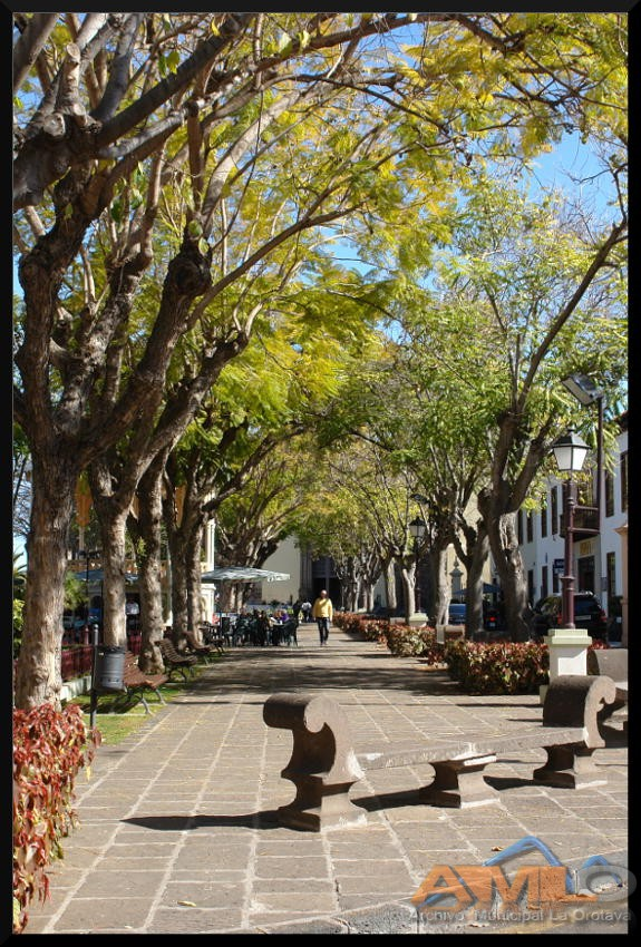 Plaza de La Orotava 1