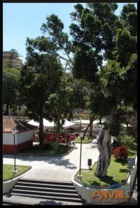 Plaza de La Orotava 2